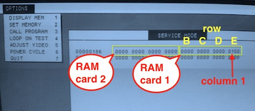 Lisa service ram flags shown