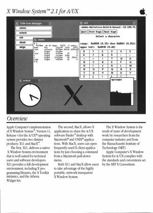 X window system 2 1 9001